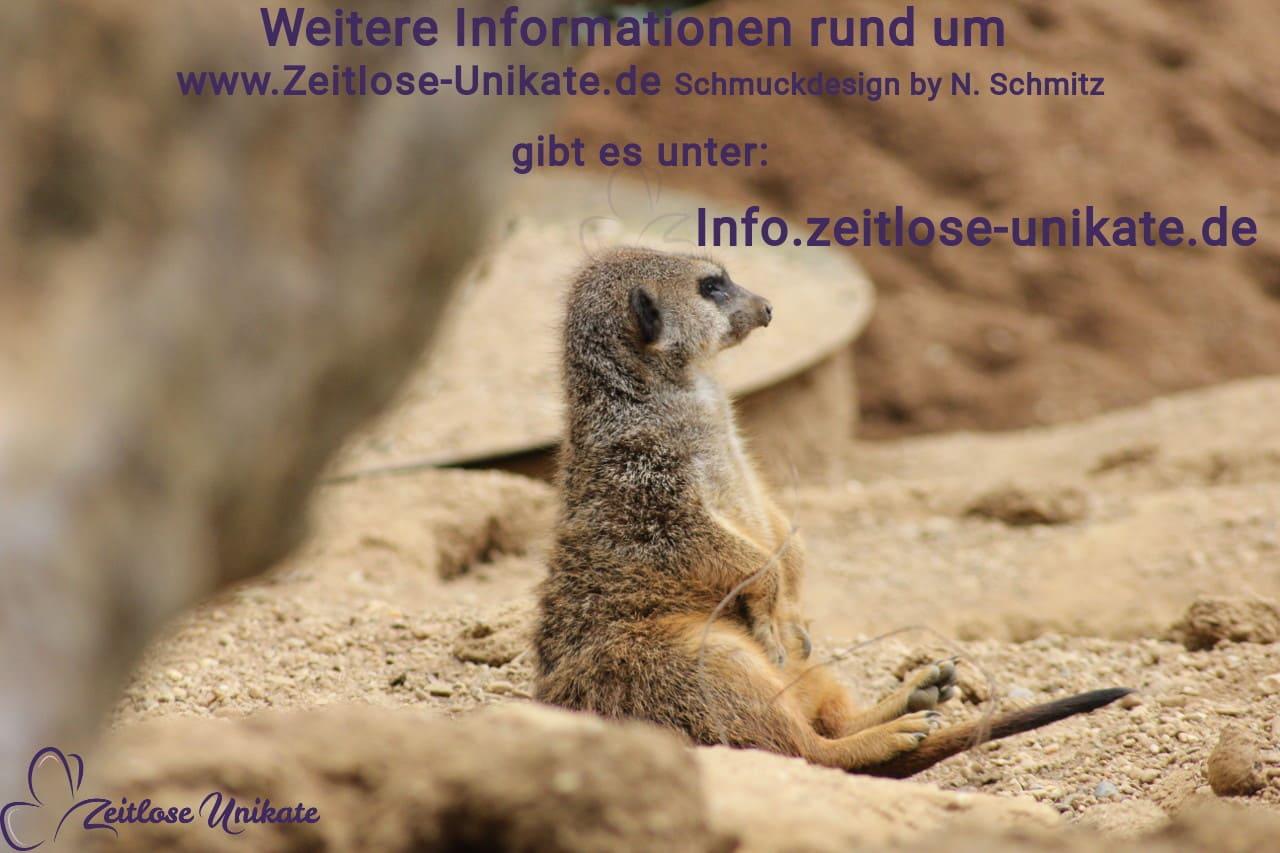 Hinweis auf neue Info Seite